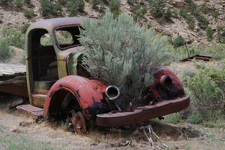 Sagebrush Motor - Wend Images Gallery