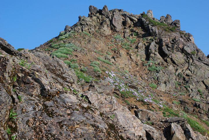Sauk Mountain Summit - Wend Images Gallery