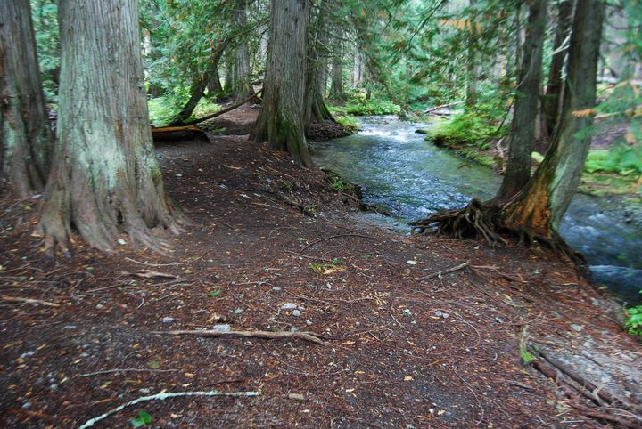 Snow Melt Creek - Wend Images Gallery