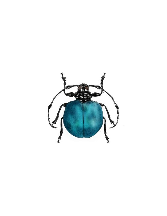 Beetle #1 - Tomahto Art Studio