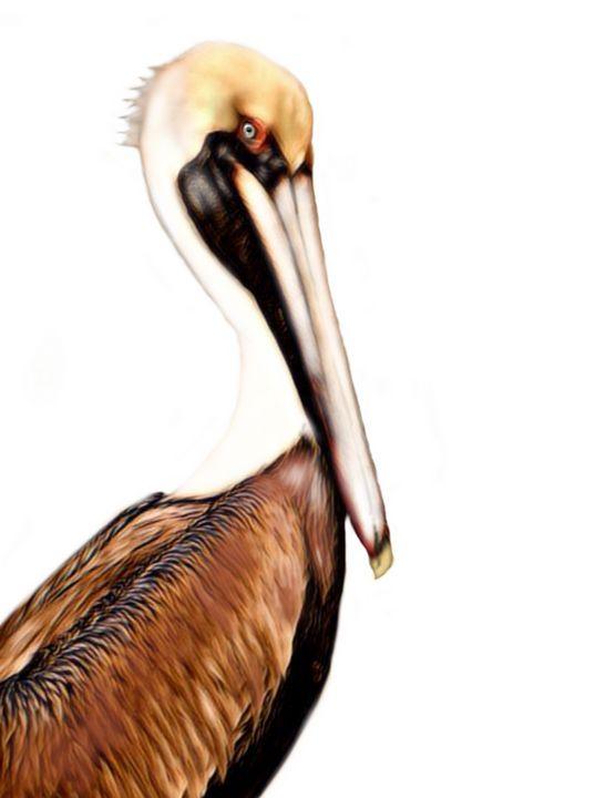 Pelican #1 - Tomahto Art Studio