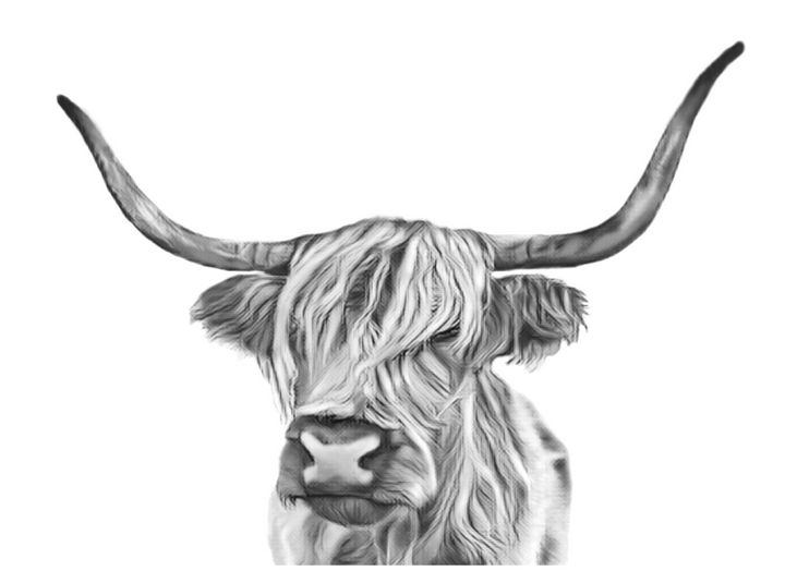 Long Haired Cow (Black & White) - Tomahto Art Studio