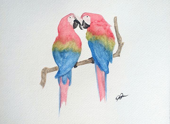 Macaws. - Calum Robertson Art