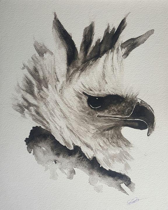 Harpy Eagle - Calum Robertson Art