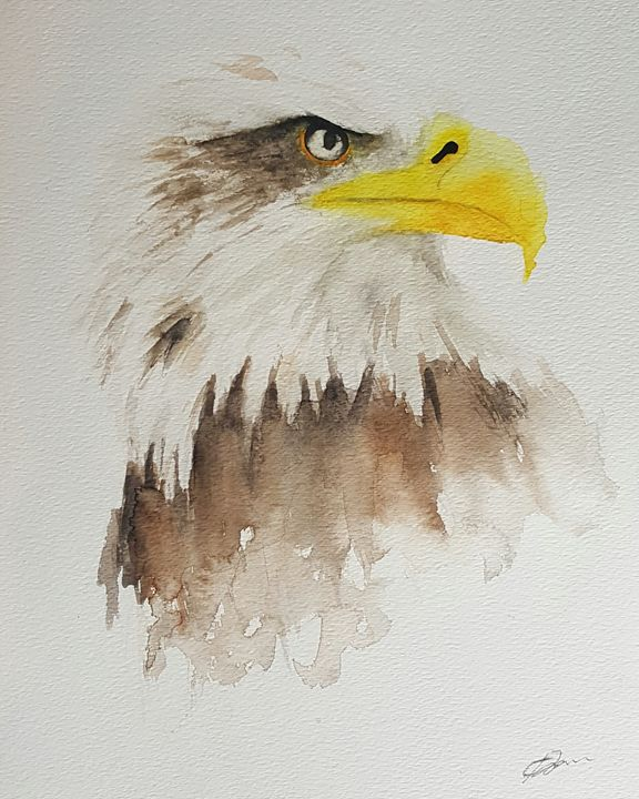 Bald Eagle - Calum Robertson Art