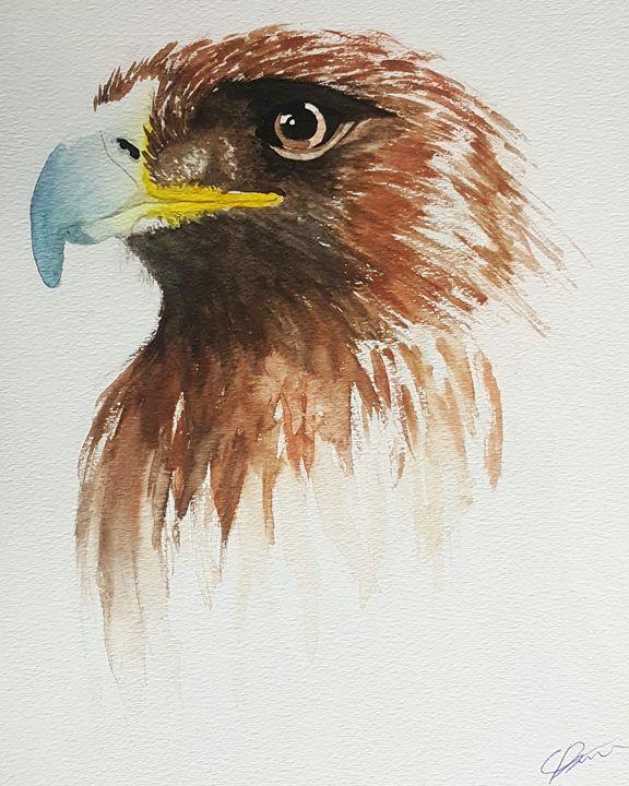 Golden Eagle. - Calum Robertson Art
