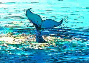 Balene-whales