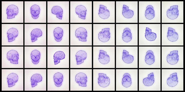 Skulls - White - Illustrations
