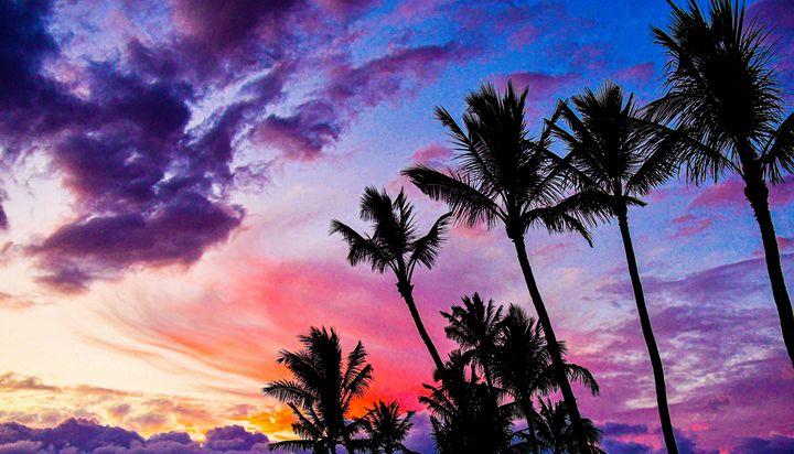 Sunset - Kari Ann Jamison Photography
