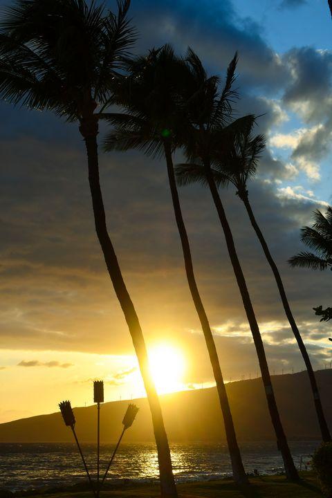 Maui Sunset - Kari Ann Jamison Photography
