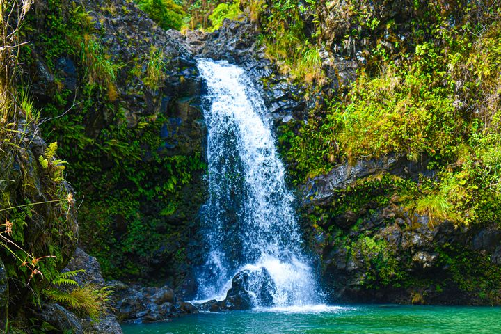 Waterfall of Hana - Kari Ann Jamison Photography
