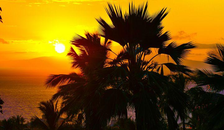 Sunset in Paradise - Kari Ann Jamison Photography