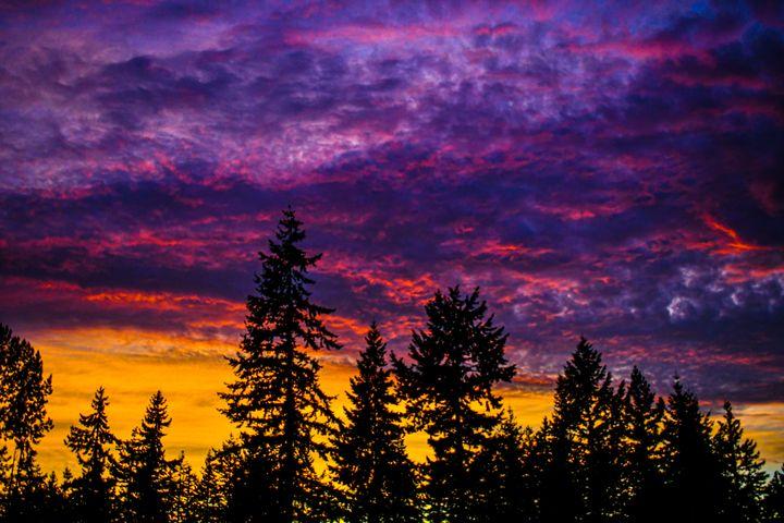 PNW Sunset - Kari Ann Jamison Photography