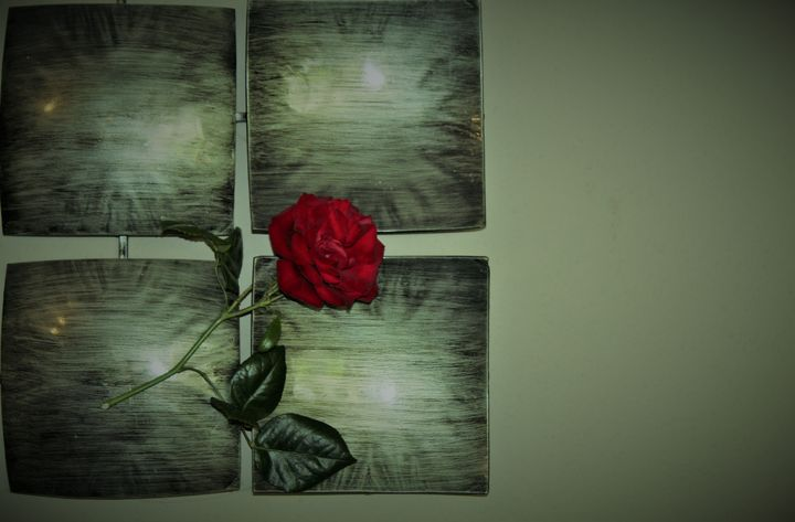 a single rose... - billys art...