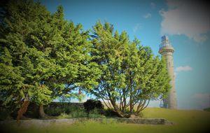the spire of lloyd