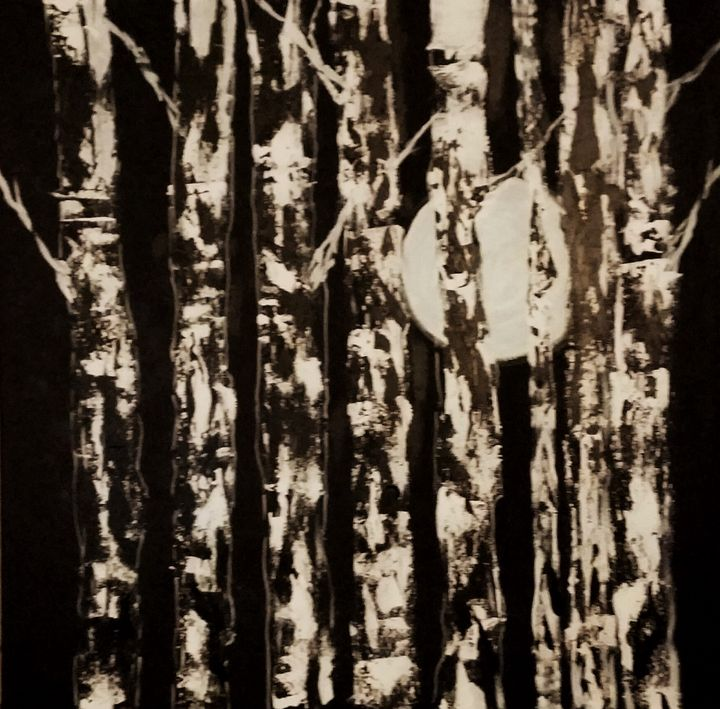 Birch Trees at Night - Red Fish Art Studio