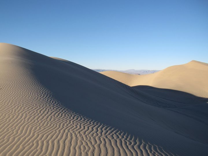 Morning Sand Dunes - Tasha Lynn