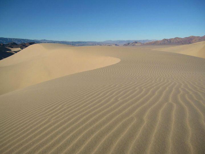 Fresh Sand at Dumont Dunes - Tasha Lynn