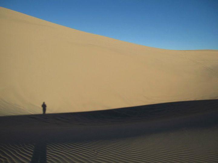 Morning Dune Shadows - Tasha Lynn
