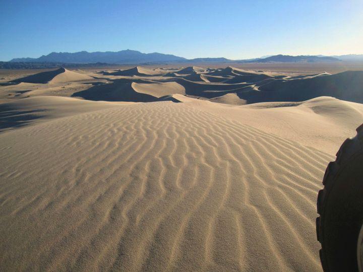 Morning Dune Ride - Tasha Lynn