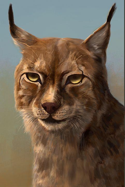 Wild Lynx - Natalia // co.nats.y