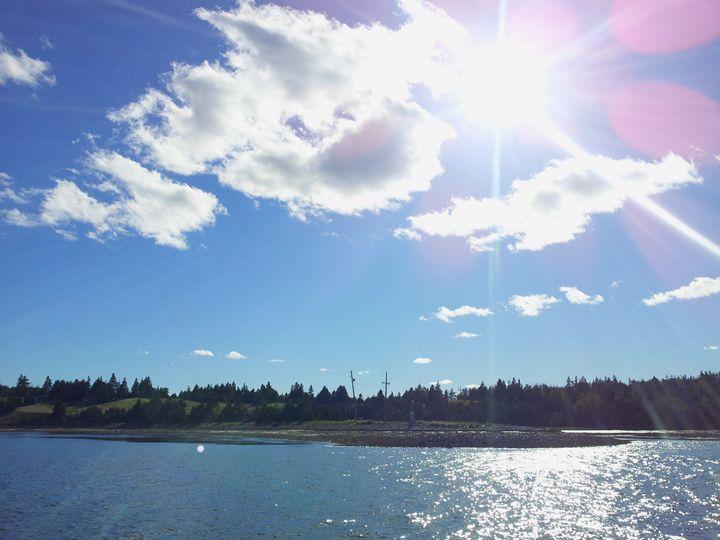Sunshine - Photos by Oswin