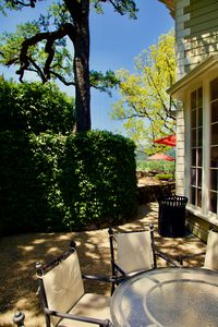 Napa back patio yard