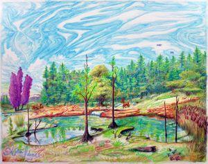 Deer Streams Drawing