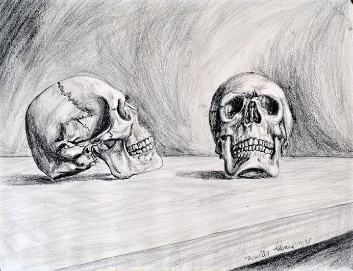 Skull Study - Art of Walter James Idema