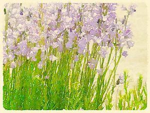 Purple Whispers