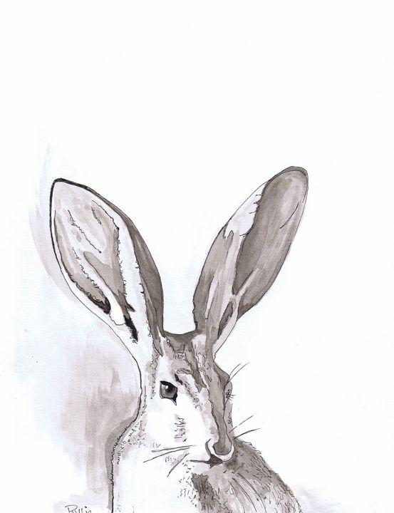 Jack Rabbit - Pullin Artwork