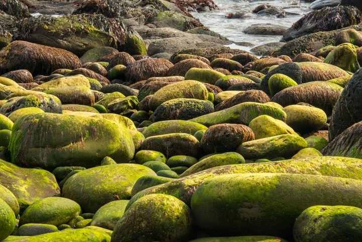 Iceland shoreline - Brodoc Photography