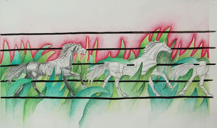 Horses - Bednarek Art