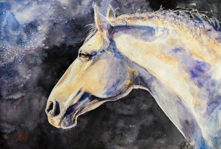 Gray horse - Eve Mazur
