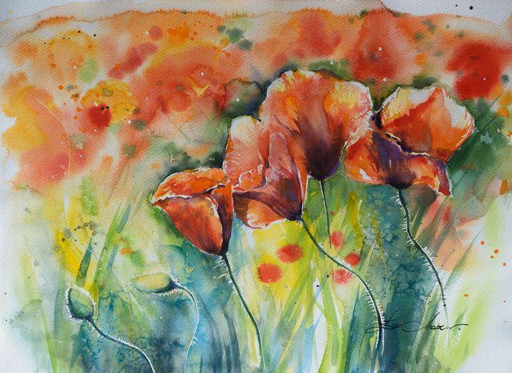 Red poppies - Eve Mazur