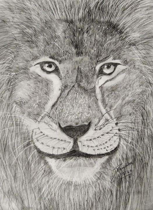 Lion portrait - Hems