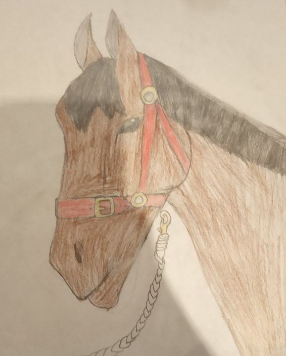 Charlie show jumping - Amy's horse art