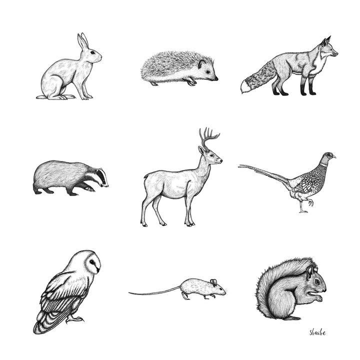 Woodland Animals - sbaibe