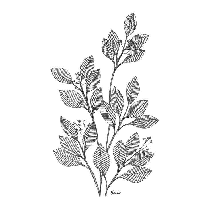 Leaves - sbaibe