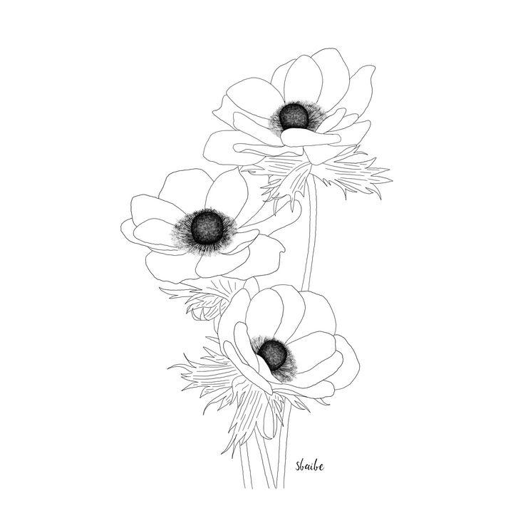 Poppies - sbaibe