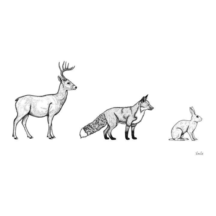 Deer Fox Rabbit - sbaibe