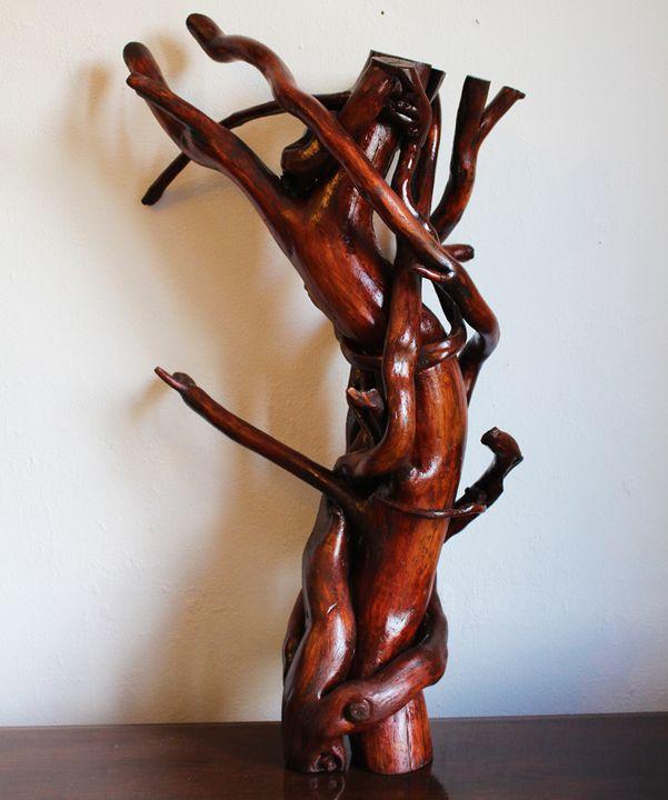 Tortuous wood - Jonathan Pradillon
