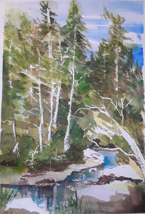 Backwoods Creek Scene - A Hart of Art