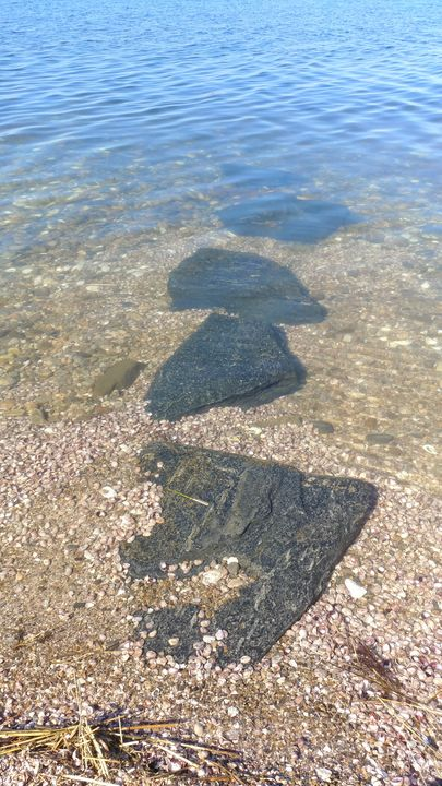 Stepping Stones in the Water - Shells Please