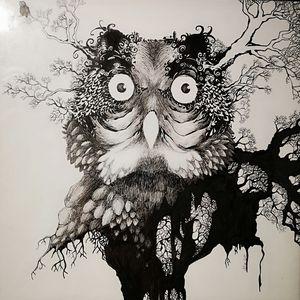 LE HIBOU Illustration sur papier