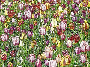 Tulip Garden Digital Image