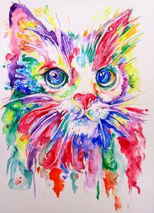 Colorful cat.Fantastic nature