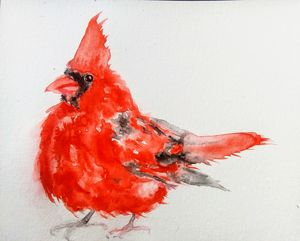 Red Christmas cardinal