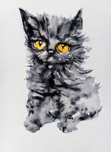 Black Persian. kitty