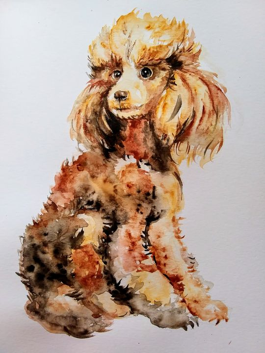 Phantom poodle dog art - Daniela